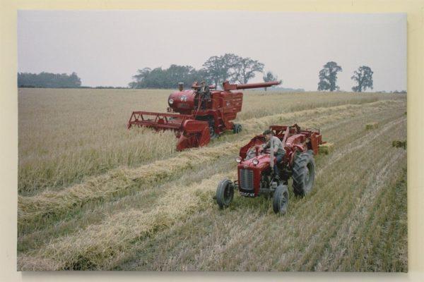 Massey Ferguson MF35 Tractor with Baler and Combine
