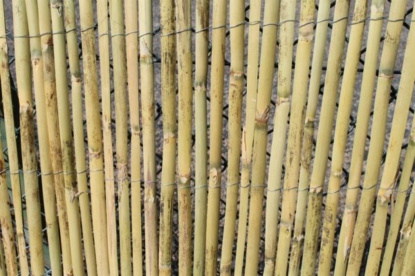 Bamboo Fencing Rolls 1.8M Tall and 3.8M Long