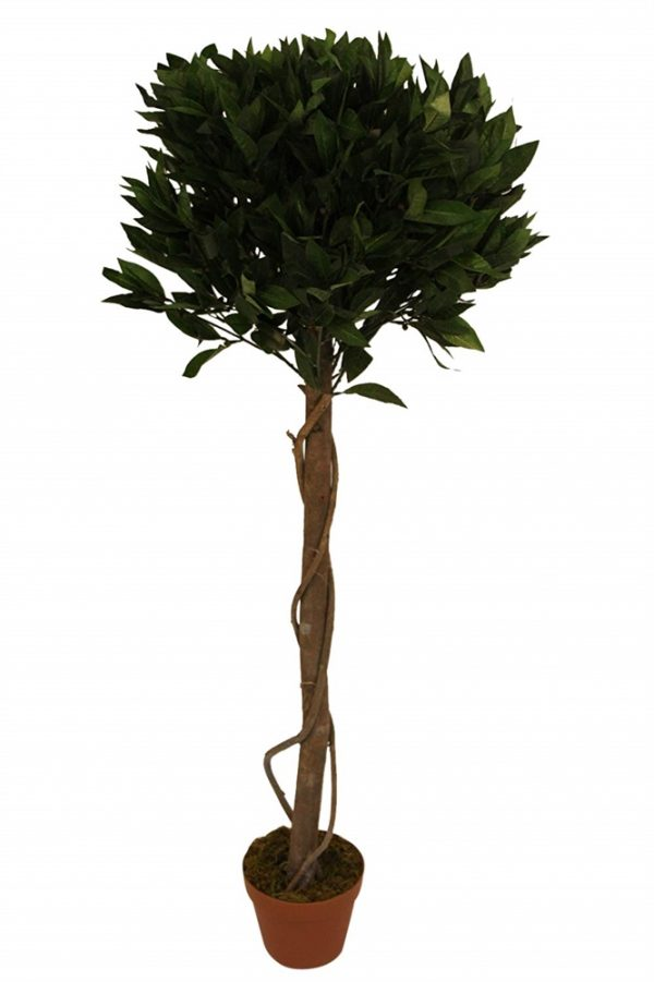 1.65M Tall Artificial Bay Trees With Pots-set 2