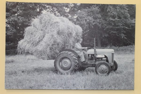 Ferguson TE20 Tractor With Back Board of Straw