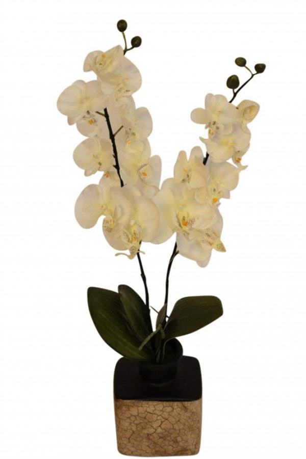 Large Artificial Cream Orchid in a Pot- FL12706