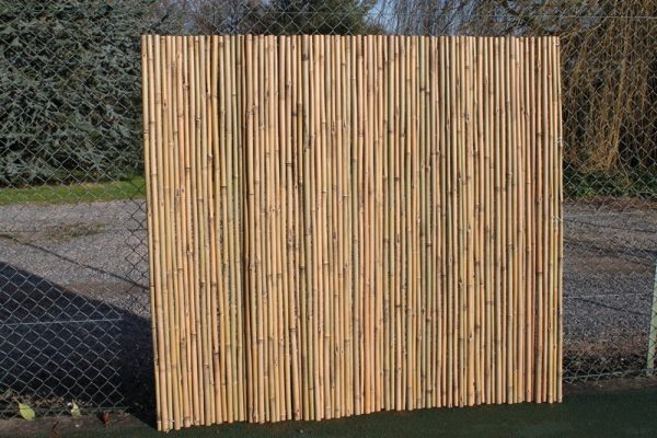 Heavy Duty Bamboo Screening Rolls 1.8M Tall and 2M Long
