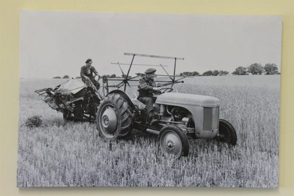 Ferguson TE20 Tractor and Binder