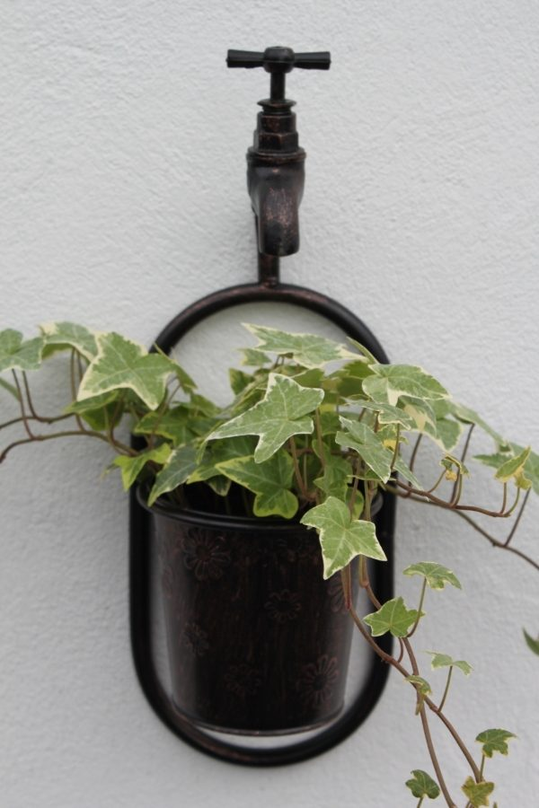 Metal Wall Single Plant Holder With Ornate Tap