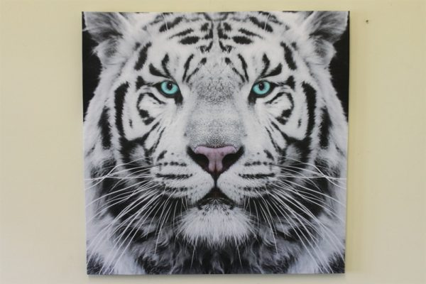 Large 'Siberian Tiger' Canvas Print
